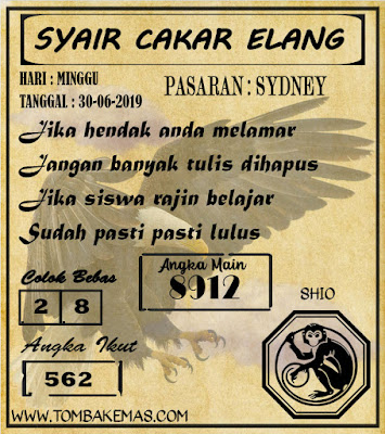 SYAIR SYDNEY 30-06-2019