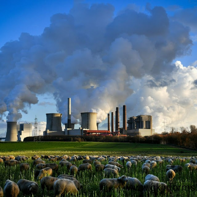WORLD CARBON POLLUTION FALLS DRASTICALLY
