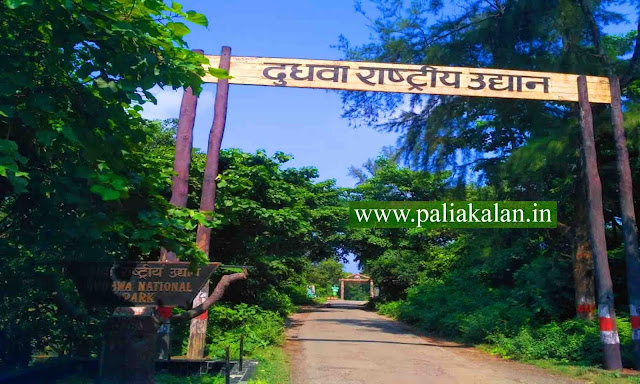 old gate of dudhwa national park