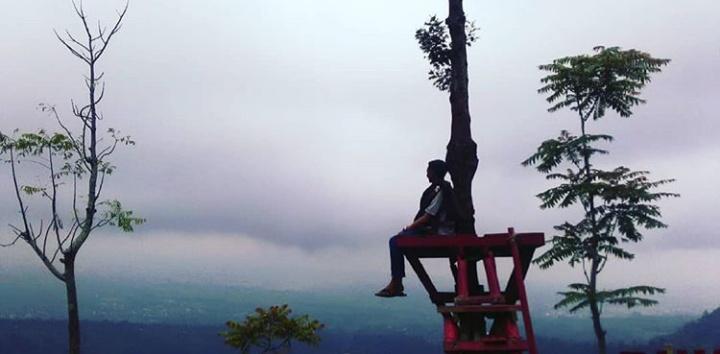 Bukit Cinta Lembah Seroja Wonosobo Tiket Masuk dan Lokasi