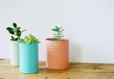 cat semua permukaan kaleng untuk jadi pot tanaman yang dipajang dalam ruangan.