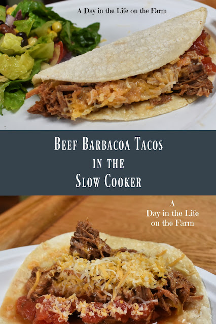 Beef Barbacoa Tacos pin