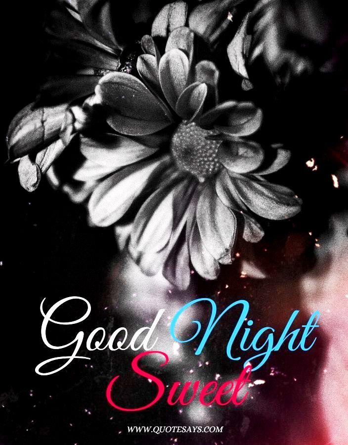 Good Night Black Flower