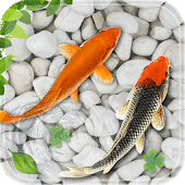 Koi-Fish-Live-Wallpaper-APK-v1.1-(Latest)-for-Android-Free-Download
