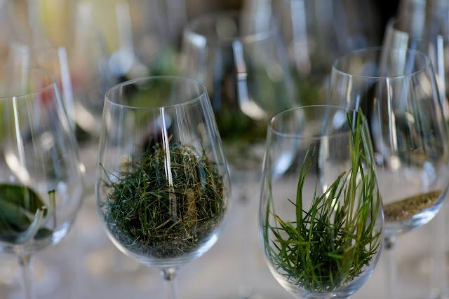 Ein Tag in der Pfalz, Pomponetti, Weingut Gies- Düppel, Weinaromen
