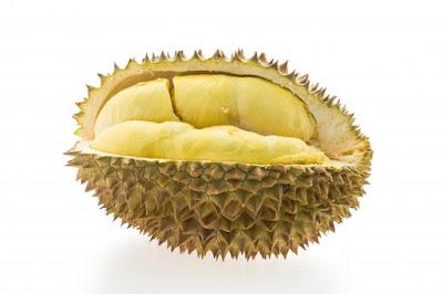 Peluang Bisnis Usaha Sop Durian dengan Analisa Lengkap