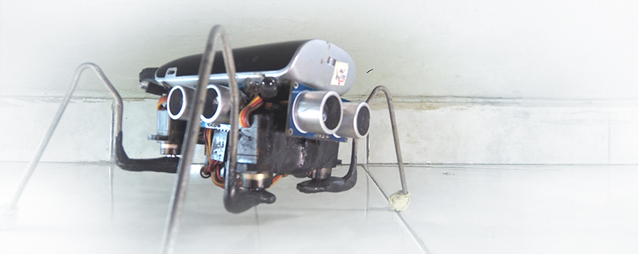 Chaotic voltage walter the arduino insect robot