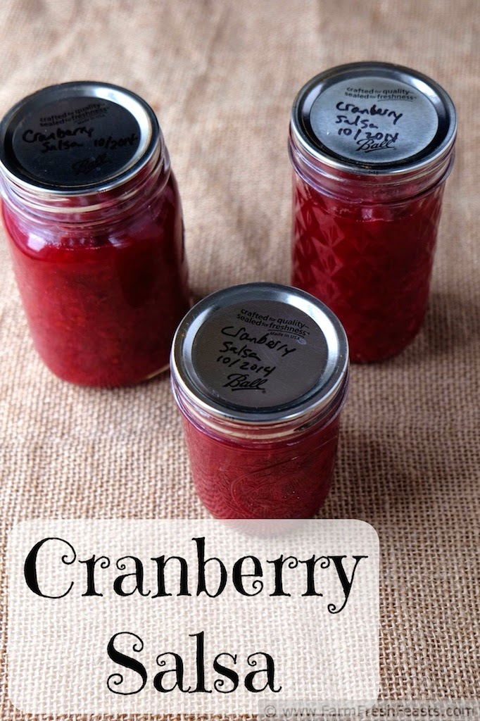 Sweet and spicy, this gluten free condiment of honey-sweetened cranberries, onions, and peppers is terrific on a leftover turkey sandwich. The bright color makes a lovely edible gift during the holiday season.