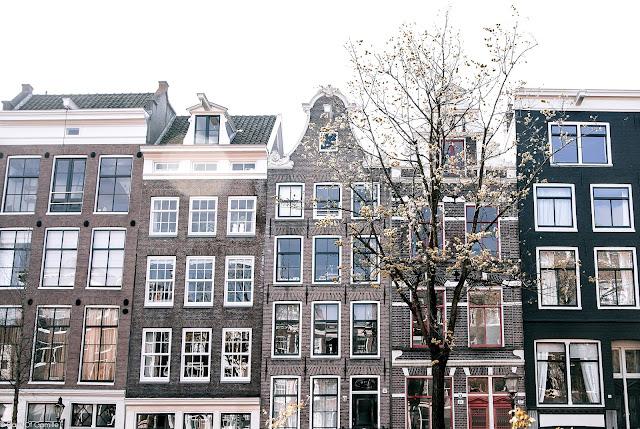 Amsterdam #1 / Quartier du Jordaan & Artis Royal Zoo