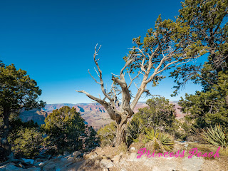 Grand-Canyon-National-Park-Hermits-Rest