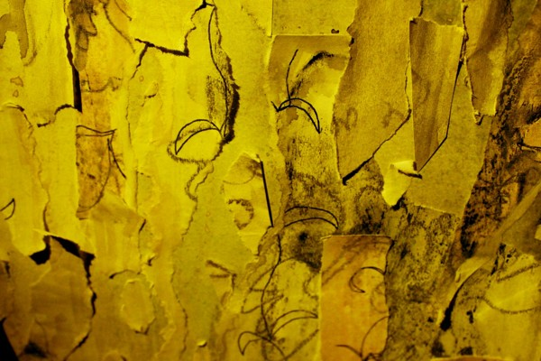 gilman yellow wallpaper The yellow wallpaper is a 6,000-word short story by the american writer charlotte perkins gilman, first published in january 1892 in the new england magazine it is regarded as an important.