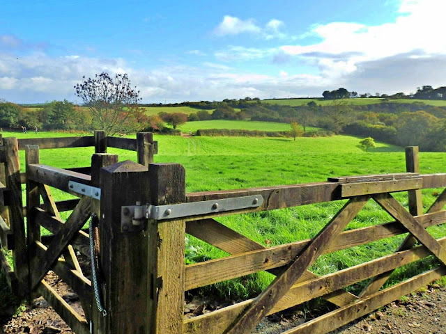 Gate and Green Fields at Lost Gardens of Heligan, Cornwall