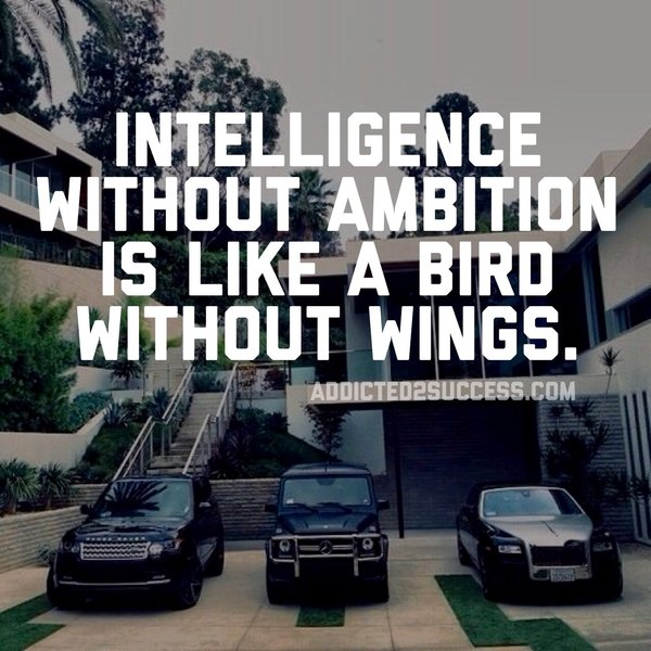 Intelligence without Ambition is like a bird without wings.