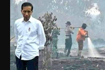 Sesalkan Penanggulangan Karhutla Telat, Jokowi: Kalau Sudah Begini Makan Biaya Banyak