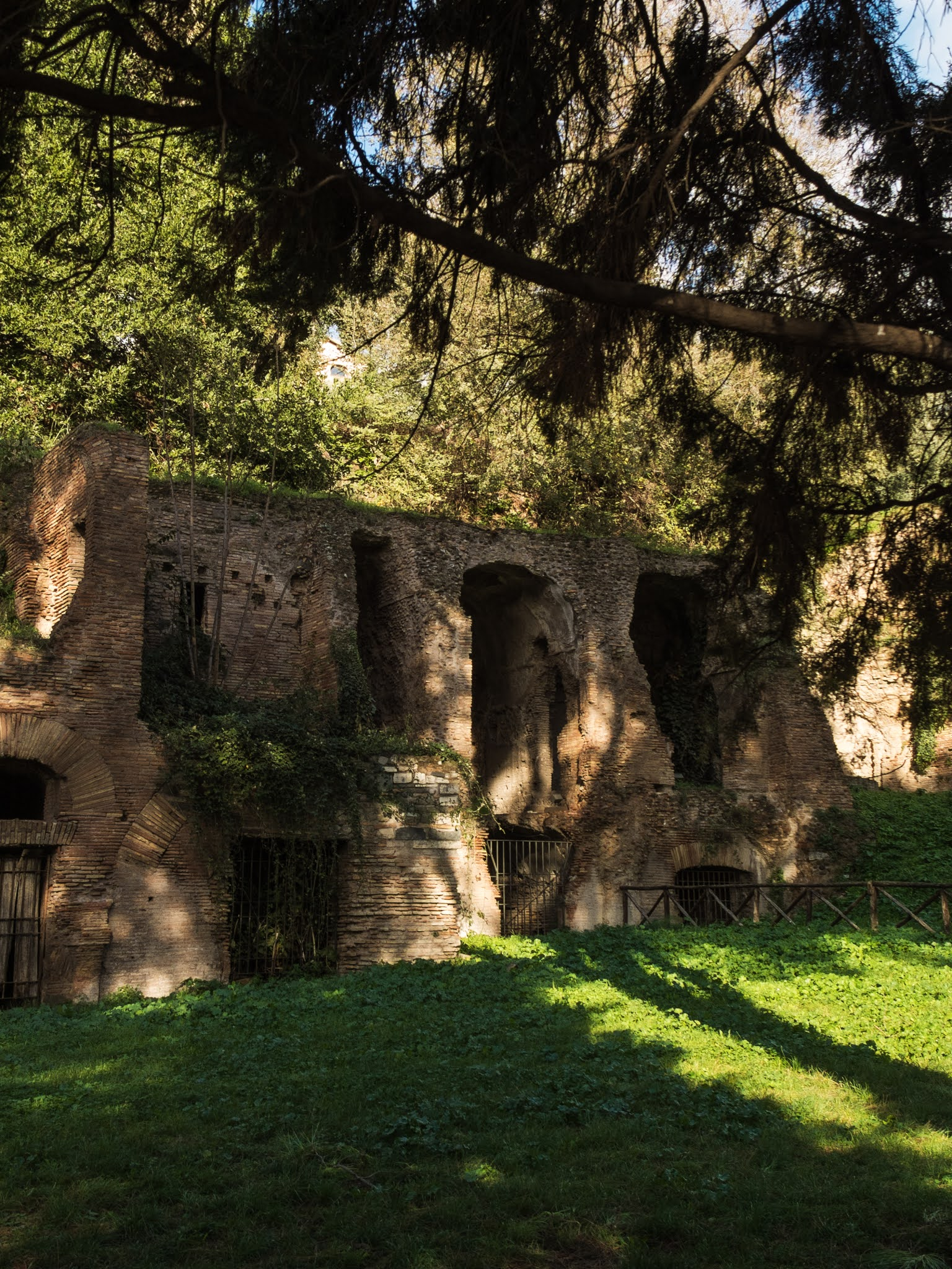 Red brick ruins on Palatine Hill surrounded with pine trees.