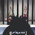 One Piece : 819 : ون بيس
