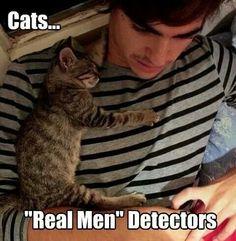 Cats are 'Real men' Detectors
