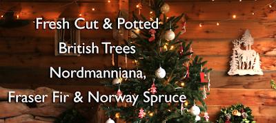 http://prestonbissettnurseriesandcountryshop.blogspot.co.uk/2017/11/christmas-tree-prices.html