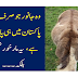 Animal that is found only in northern Pakistan, it is not a markhor..