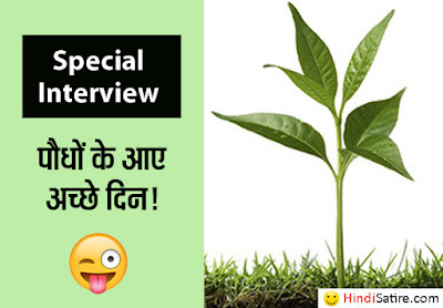 interview-with-plant-satire