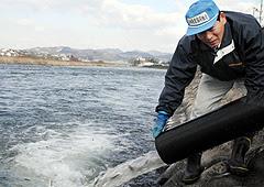 筑後川水系の大山、玖珠、三隈の各川に稚アユ約31万匹を放流