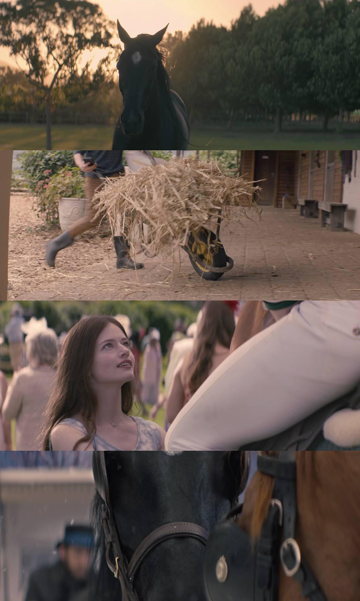 Belleza Negra (2020) HD 720p Latino