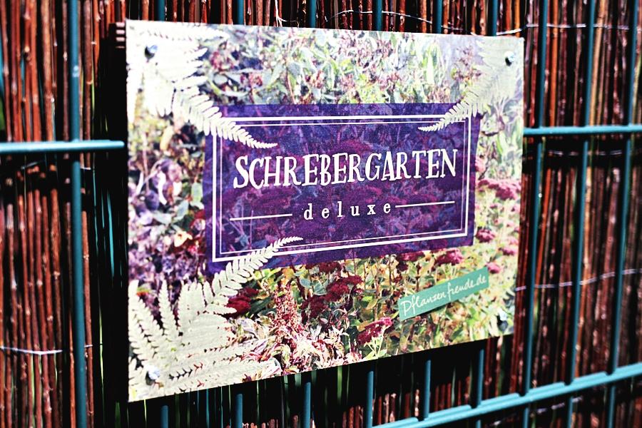 schrebergarten deluxe berlin pflanzenfreude.de