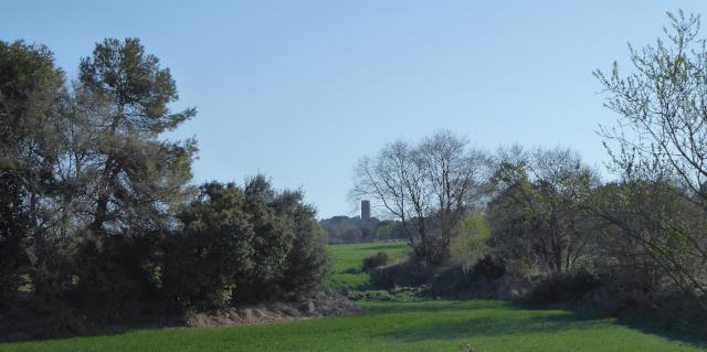 La torre dominant el paisatge