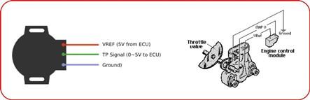 Cara Kerja Sensor TPS Pada Mesin Injeksi