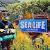 Legoland Aquarium Malaysia