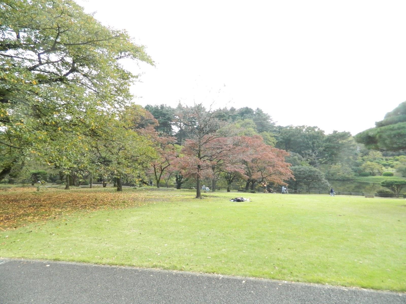 nihon fan: shinjuku gyoen - japanese traditional garden