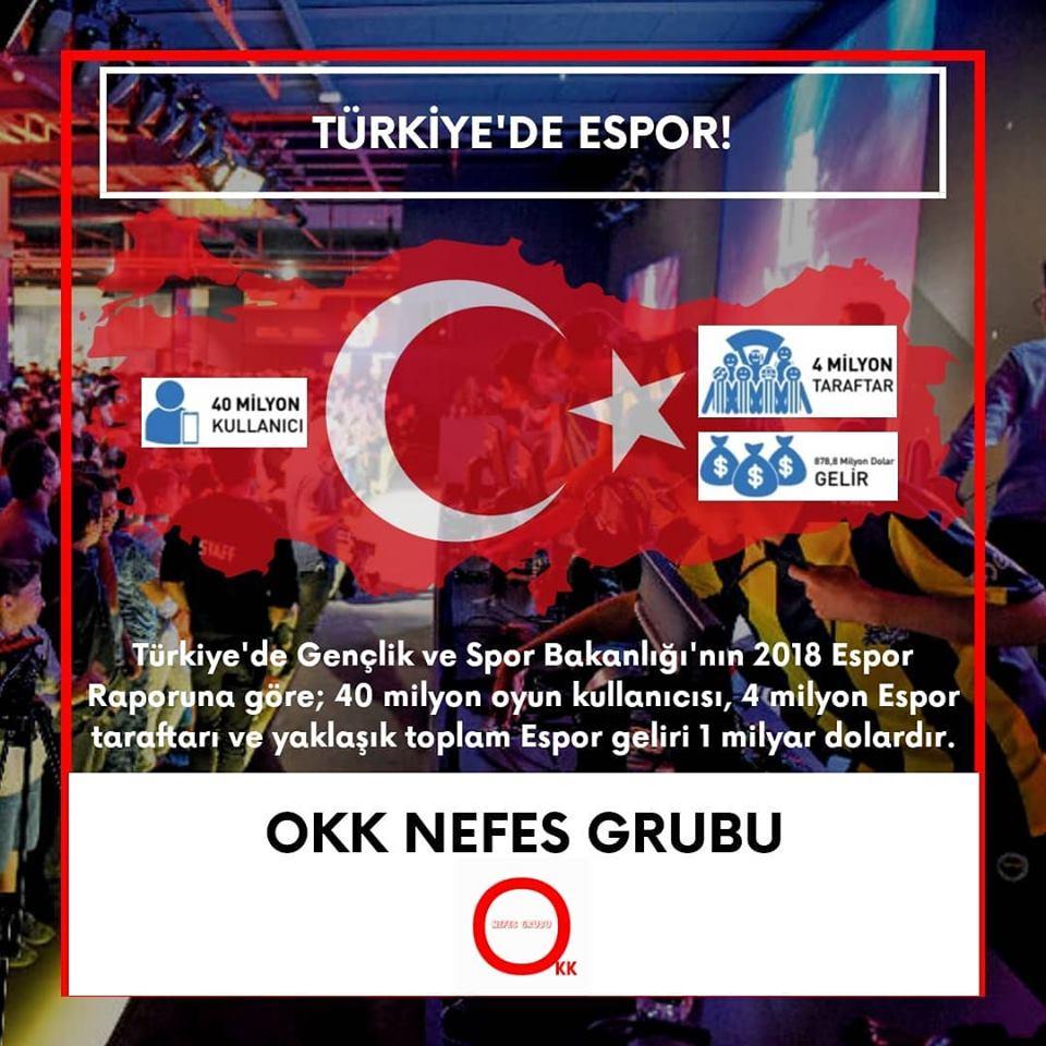 Türkiye'de Espor