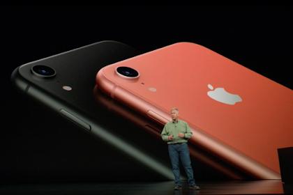 Apple Dikabarkan Bakal Potong Harga iPhone XR di Jepang