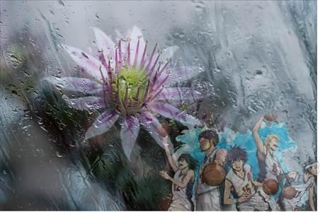 Bunga Layu Karena Air Hujanlah yang Paling Menggerakkan Hati Kita