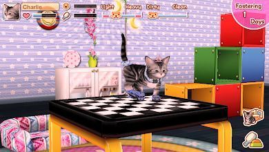 Game My Cat