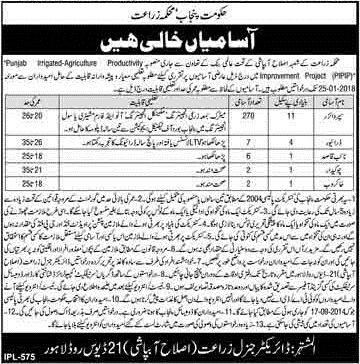 Jobs in Agriculture Department Government of Punjab Jan 2018