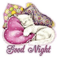 2 Line Good Night SMS