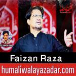 https://humaliwalaazadar.blogspot.com/2020/08/faizan-raza-nohay-2021.html