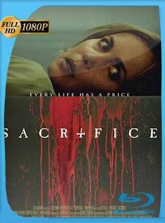 El Sacrificio (2016) HD [1080p] Latino [GoogleDrive] SilvestreHD