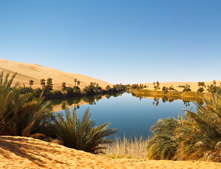 Encontrando Água no Deserto