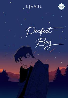 Perfect Boy by Niamel Pdf