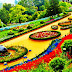 4 Most Famous Batanical Gardens To Visit in India