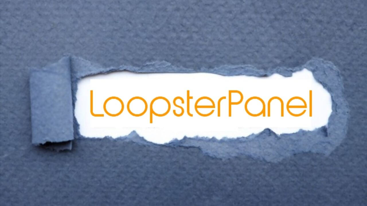 loopsterpanel-encuestas-paypal