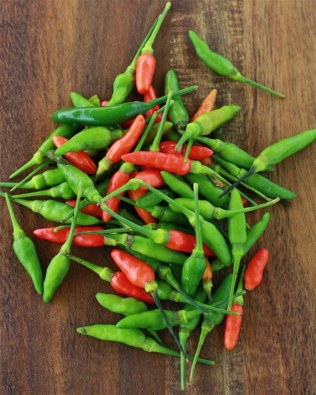 red and green spicy birds eye chili
