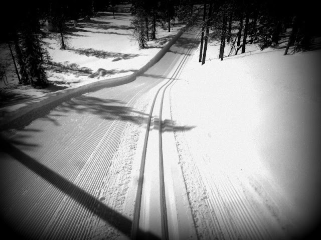 Groomed ski trails in Finland.