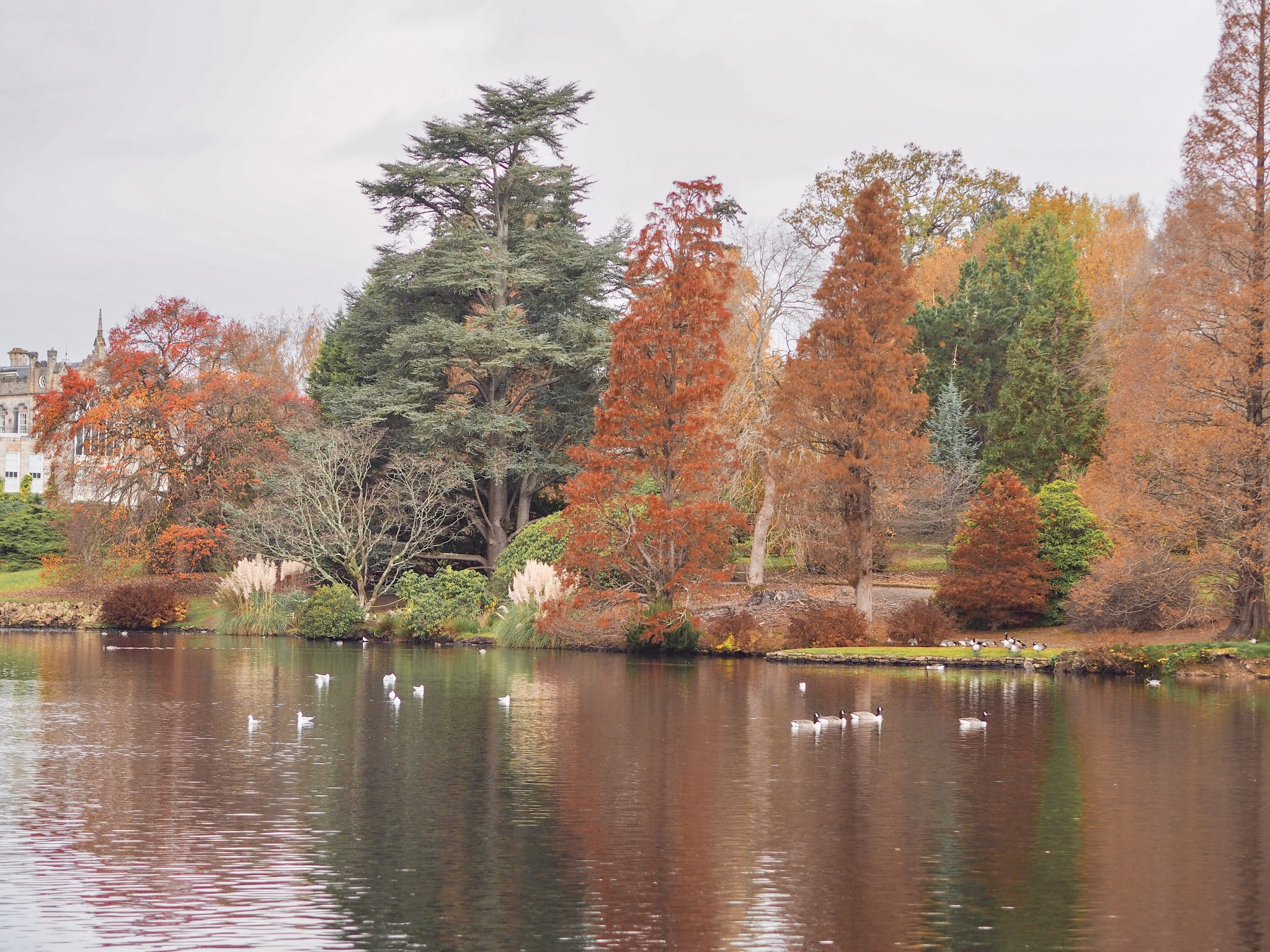 Autumn Colour at Sheffield Park, Katie Kirk Loves, UK Blogger, Autumn Photography, National Trust, UK Gardens, Sussex UK, Sheffield Park and Gardens, Fall Photography, Autumn Leaves, Autumn Colour, Autumn Fashion