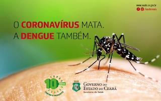Prevenção às arboviroses deve continuar durante pandemia