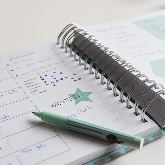 Grinsenizer, terminkalender, terminplaner, organiser, timer, kalender, 2017, grinsestern