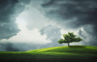Arabic Vocabulary and Expressions About Weather