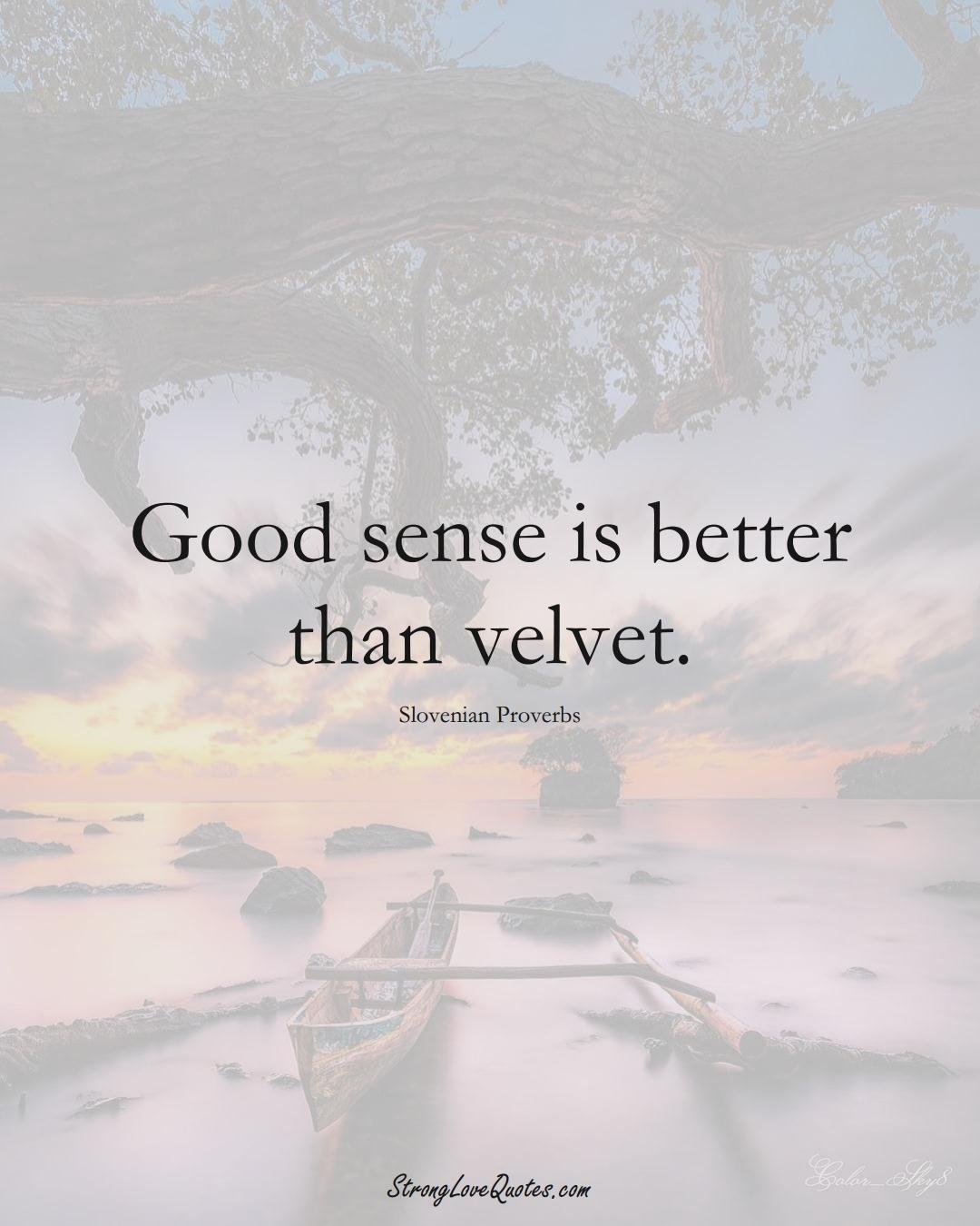 Good sense is better than velvet. (Slovenian Sayings);  #EuropeanSayings